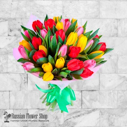 Fleurs de printemps de Moldavie # 1