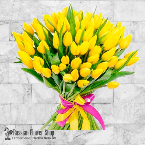 Fleurs de printemps de Moldavie #8